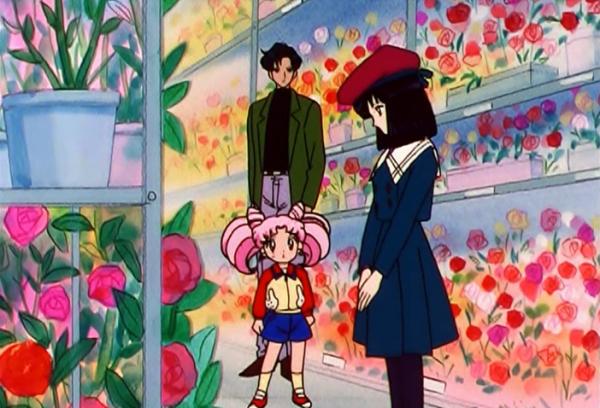hotaru-roses